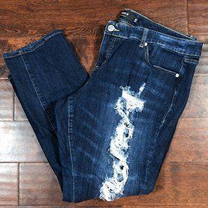 TORRID Boyfriend Destroyed Dark Wash Jeans Sz 20